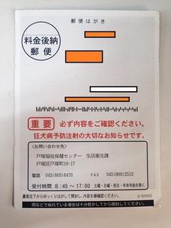 DSC_06091.JPG
